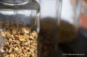 Bazar sadik in semen
