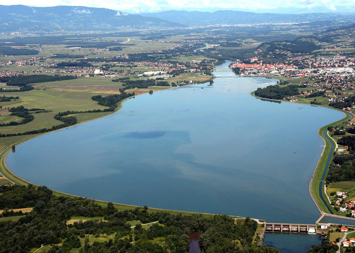 Na Ptujskem jezeru postavili ornitološko opazovalnico