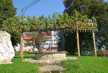 Vinogradniki v Cerkvenjaku bodo opravili rez Johanezove trte