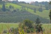 V okviru gomilnega grobišča v Brengovi naj bi kmalu uredili učno pot