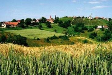 Kako bo nov način subvencioniranja vplival na razvoj Slovenskih goric?