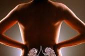 Dr. Rajko Brglez svetuje: Kako ohraniti zdrave ledvice?