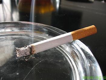 Avstrija v letu 2018 uvaja polno prepoved kajenja v lokalih