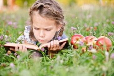 Sredine pravljične ustvarjalnice v Knjižnici Lenart primerne tudi za vrtčevske otroke