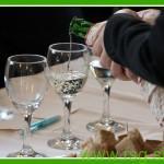 Sauvignon Vinogradništva Toplak postal Jurjevo vino