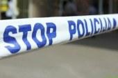 Lenarški policisti obravnavali napad dveh psov