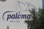 Paloma v prvih treh mesecih ustvarila preko 21 milijonov evrov prihodkov
