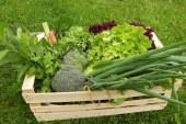 Zadruga Dobrina: Zabojčke lokalne in sveže hrane dostavljajo tudi v Lenart