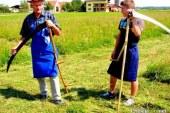Sredina junija, pravi čas za tretjo košnjo na travnikih in njivah