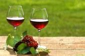 V Gornji Radgoni vinogradniško vinarski posvet