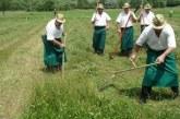 V Oseku konec tedna tradicionalno tekmovanje koscev