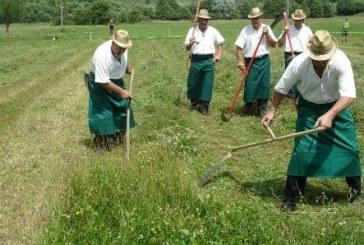 V Oseku se obeta tradicionalno tekmovanje koscev