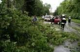 Nalivi, veter in toča povzročili težave tudi v Slovenskih goricah