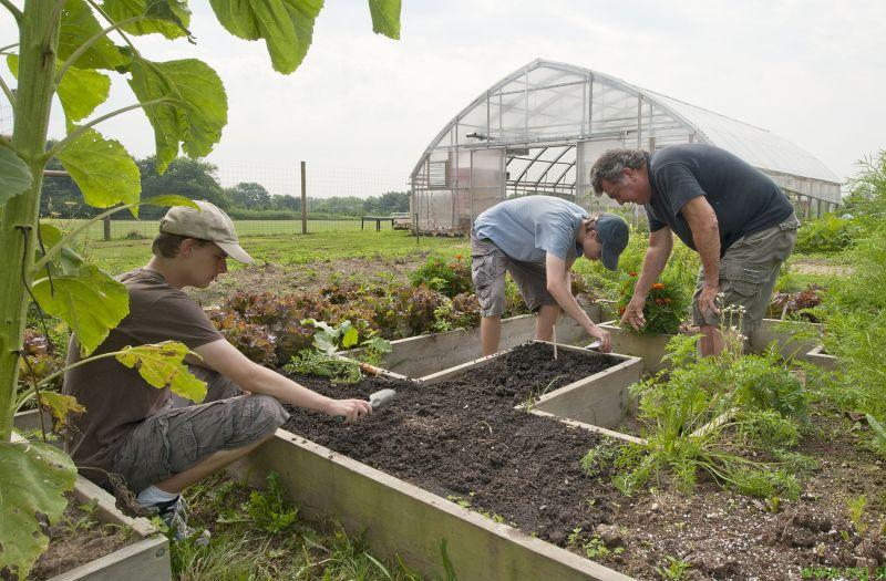 Nepovratna sredstva za mlade prevzemnike kmetij