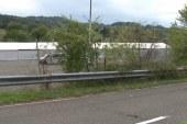 V Šentilju v pričakovanju novih beguncev postavili šotorišče