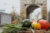 FOTO: Še o nori jesenski izmenjavi na gradu Cmurek