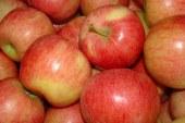 Pomanjkanje domačega sadja
