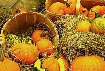 V soboto v Staršah osrednja kulturno turistična prireditev Pozdrav jeseni