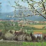 V Lovrencu na Pohorju poteka v postnem tednu zanimiv seminar