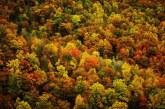 V Staršah tudi letos tradicionalni pozdrav jeseni