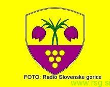 Občinski praznik v Trnovski vasi
