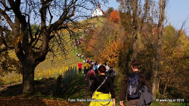 FOTO: Čarovnice, še bolj pa vino, v Svečino privabilo številne pohodnike