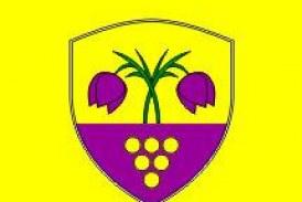 Prireditve in dogodki v Trnovski vasi