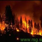 V požaru v Selnici ob Dravi nastalo precej škode