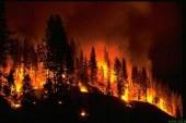 Velik požar v Selnici ob Dravi