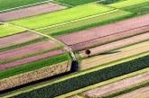 Prihodnost slovenskega kmetijstva
