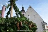 FOTO: Adventno vandranje v Voličino