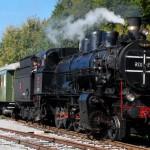Muzejski vlak na praznični vožnji s ptujske železniške postaje