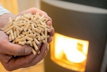 Lesna biomasa velja za enega najcenejših načinov ogrevanja