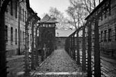 Ob dnevu spomina na žrtve holokavsta več dogodkov tudi na našem koncu