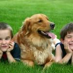 Na srednji trgovski šoli ob 140 obletnici tudi o sobivanju s psom