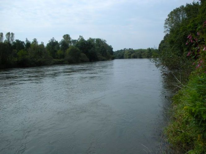 V središču pozornosti reka Mura