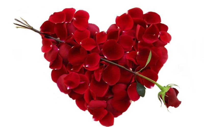 Valentin ima ključ od korenin