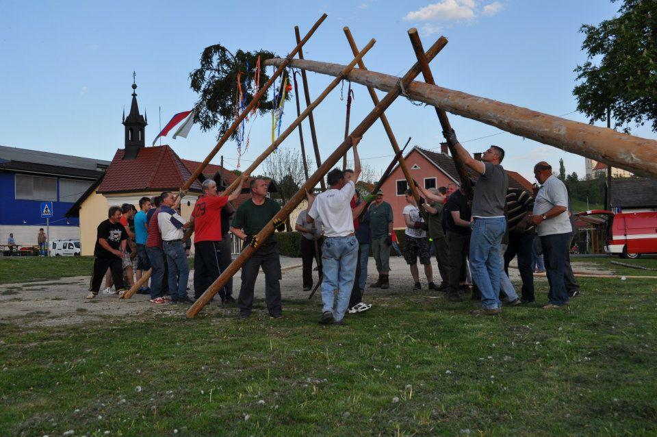 V nedeljo v Benediktu postavitev prvomajskega drevesa in kresovanje