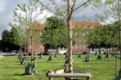 V Mariboru bodo zasadili 91 novih dreves