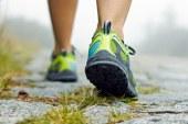 V Mariborskem mestnem parku test hoje na dva kilometra