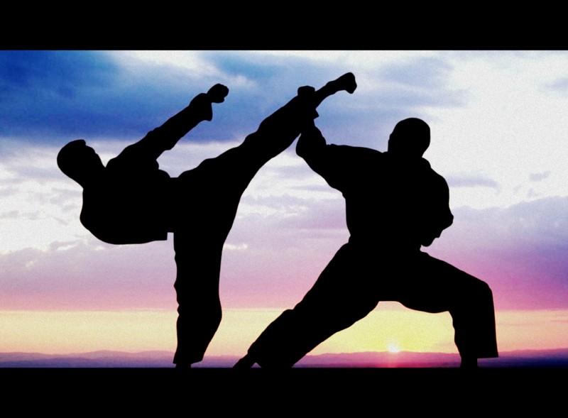 Občinski Dupleški karateisti