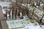 Neurja z močnim deževjem na Štajerskem povzročila nevšečnosti