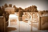 Na starem ptujskem pokopališču bodo uredili spominski park