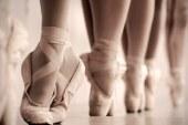 Baletna pravljica baletnega oddelka Lenarške glasbene šole