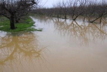 V Miklavžu na Dravskem polju je bilo v lanskem letu veliko poplav
