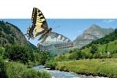 Sejem aktivnosti, oddiha v naravi, lovstva in ribištva v Gornji Radgoni