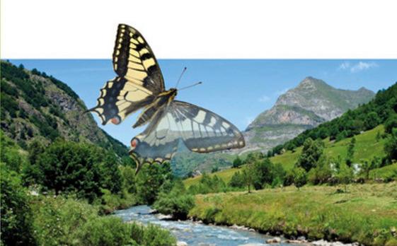 Sejem Naturo - že druga sejemska prireditev aprila v Gornji Radgoni