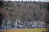 Lovska družina Lenart na leto zaradi širjenja mesta izgubi okoli 30 hektarjev lovnega ozemlja