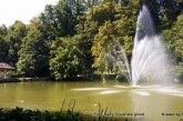 Izlov rib v spodnjem ribniku Mestnega parka