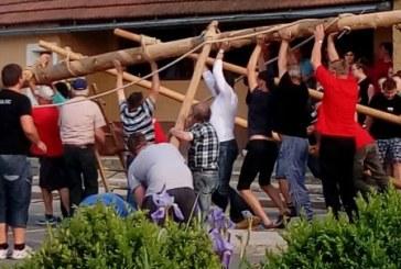 VIDEO: Majska drevesa tudi v osrednjih Slovenskih goricah